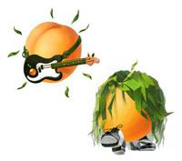 Marketing Apricots