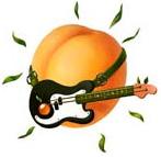 Noisy Apricot